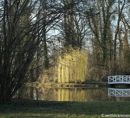 Schwetzingen_Park_Goldfäden